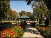 Explore Kashmir 06 nights / 07 days