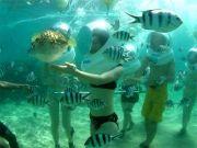 Honeymooneers Delight Bali Package