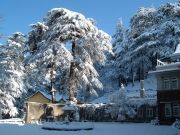 Romantic Manali volvo Tour Package
