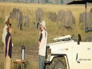 Southern Africa Explorer 20Days