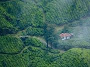 Kerala Package 04 Night /05 Days.