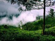 God\'s Own Country Kerala Tour 5Night/6Days