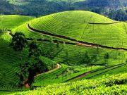 Mountain With Backwaters In Kerala