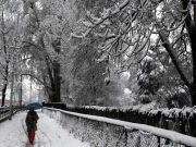 Alluring Srinagar Tour 6 Night / 7 Days