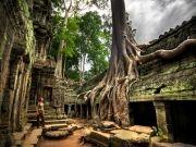 Cambodia- Siem Reap 4 Days / 3 Nights