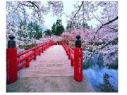 Japan Fixed Departure Tour