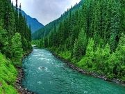 Kashmir Tour Best Tour for all time 3 Night / 4 Days
