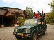 Luxury Jungle Experience in North India