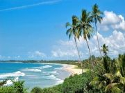 Beautiful Of Bentota to Colombo Package