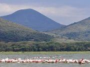 Kenya's Ultimate Vacation