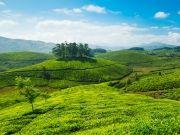 Refreshing Kerala