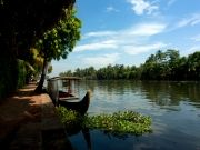 Munnar and Alleppey Tour
