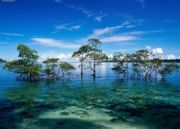Andaman Thrill Tour