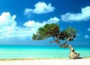 Andaman Wonders