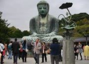 The Great Buddha Tour