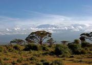 Beauty of Amboseli