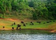 Implausible South India Tour