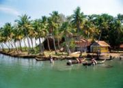 Hills Kerala and Backwaters Tour