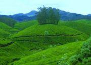 Kerala Holiday Vacation Package
