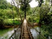Coorg Beauty 2 Nights 3 Days