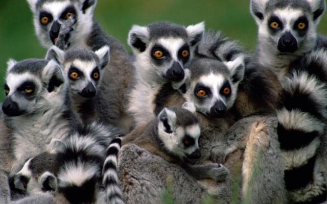 Madagascar tourism travel to Madagascar photos best tourist – Madagascar Tourist Attractions Map